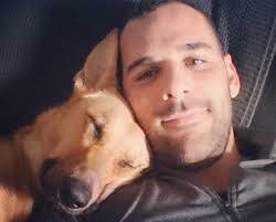 cirillo w dog
