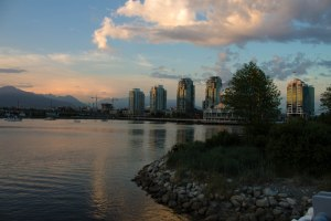 False Creek May 2015 069