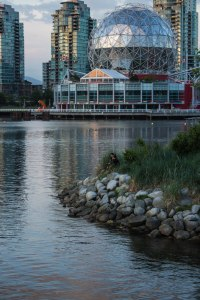 False Creek May 2015 077