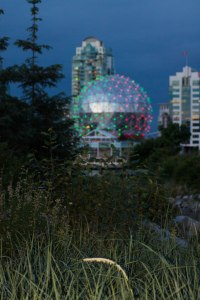 False Creek May 2015 270
