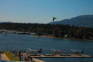 Canada Day July 1, 2015 237