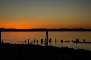5. Sunrise Steveston 013