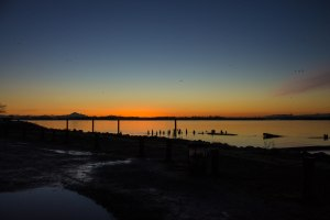 6. Sunrise Steveston 012