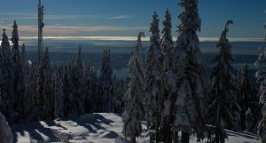 Grouse Mountain Dec 2015 013
