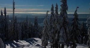 Grouse Mountain Dec 2015 013