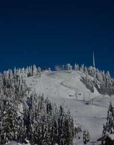 Grouse Mountain Dec 2015 067