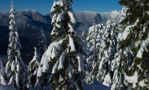 Grouse Mountain Dec 2015 097