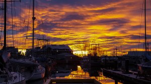morning-sunrise-jan-10-012
